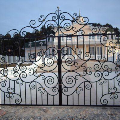 Ворота Кованая Эвольвента